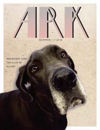 Ark h15